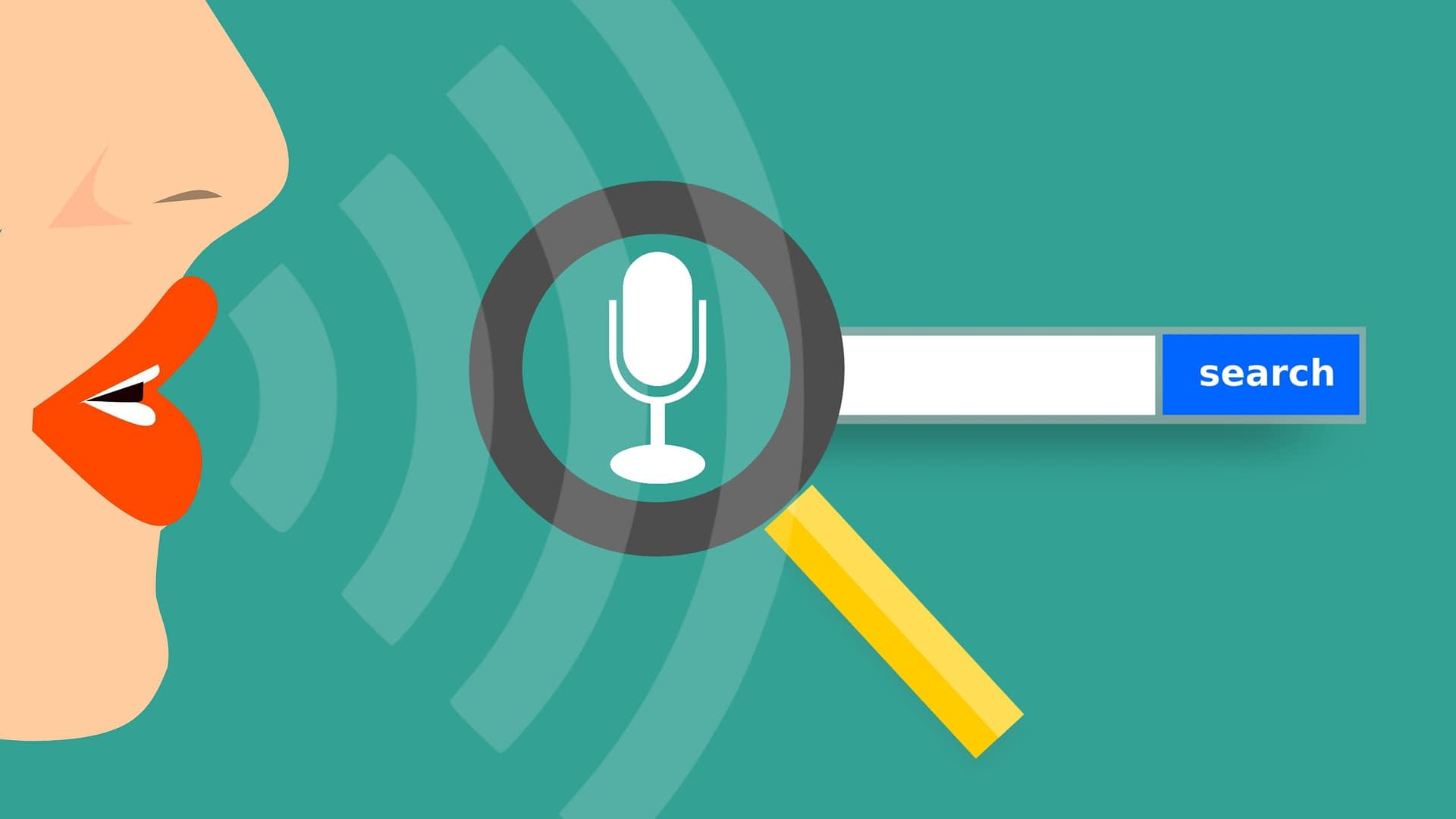 voice search bar